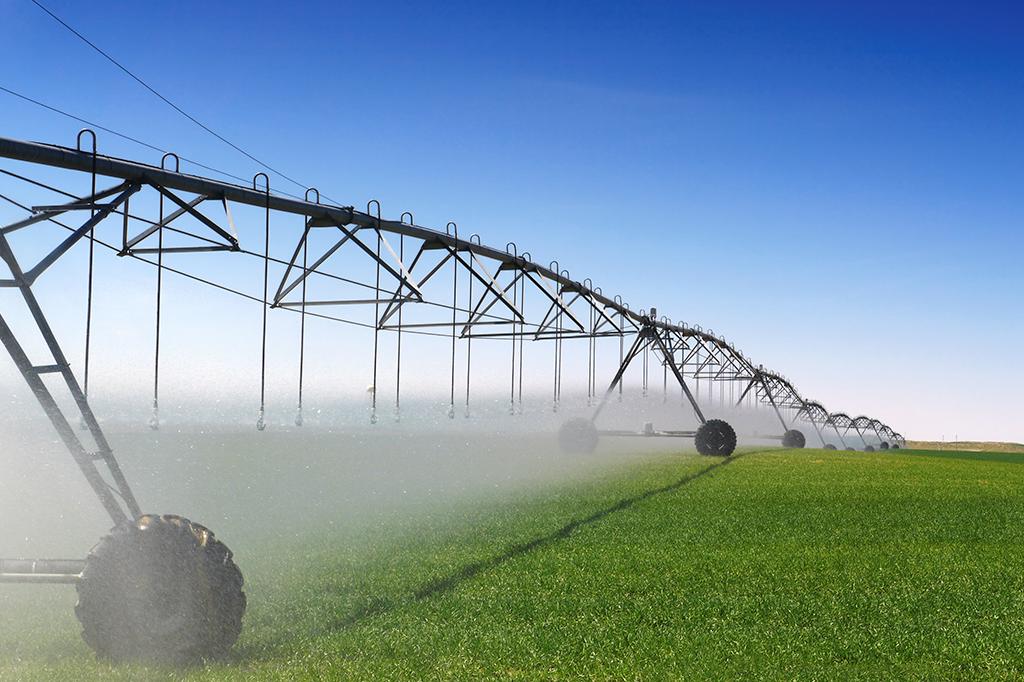 Risultato immagini per irrigazione